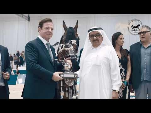 Dubai International Horse Fair: 18th - 20th March 2021