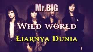 Wild world, Terjemahan lagu Mr Big