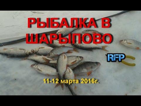 ловля карася на озерах красноярского