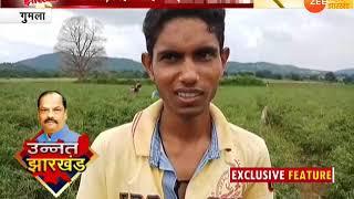 उन्नत झारखंड: गुमला में हरी मिर्च से किसानों की जिंदगी खुशहाल  ।। Unnat Jharkhand