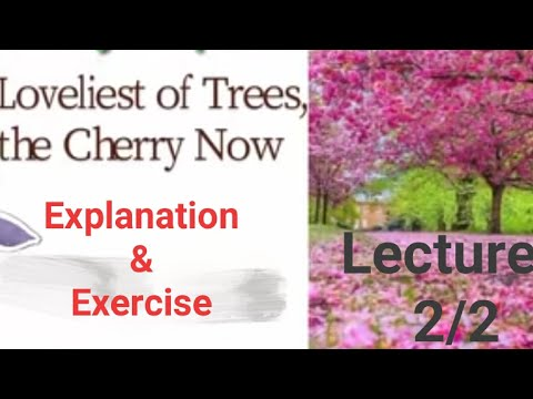 #Loveliest of trees... Lecture#2/2 # First year poem #Loveliest of...Explanation and solved Exercise