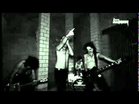 Stoneman - Zombie Zoo