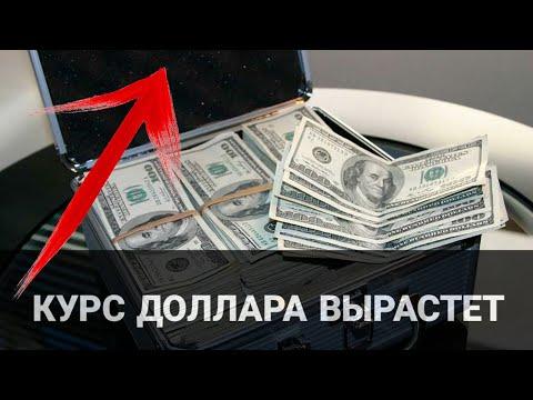 Экономист предупредил украинцев: когда и на сколько вырастет курс доллара в Украине
