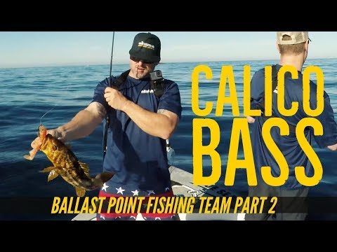 Calico Bass Fishing With Ballast Point Brewery Fishing Team Part 2
