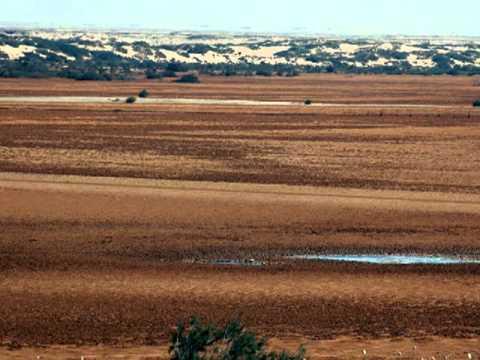 Trip Sahara - Sebkhet Imlily  : zone humide 40 km au sud est d'El Argoub