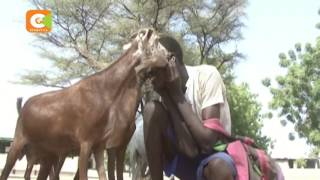 Mwanafunzi mwenye vipaji vya ajabu Turkana