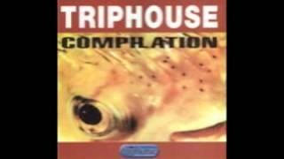 Diskonaut - Votka Travolta [Triphase, 1998]