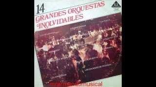 14 GRANDES ORQUESTAS INOLVIDABLES - DISCO COMPLETO.-