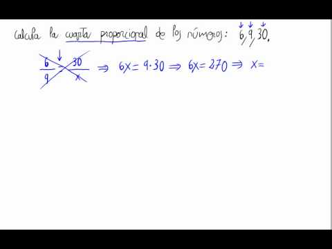 Cuarta proporcional - YouTube