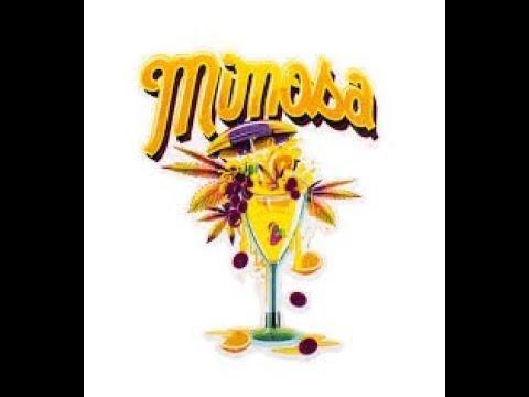 MIMOSA #14 by JUNGLE BOYS FRESH CALIFORNIA CANNABIS