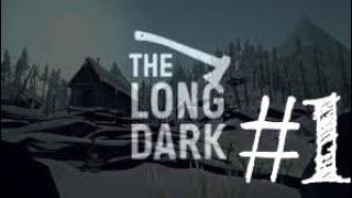 LONG DARK WINTERMUTE 1.KISIM | UÇAK KAZASI |BÖLÜM 1