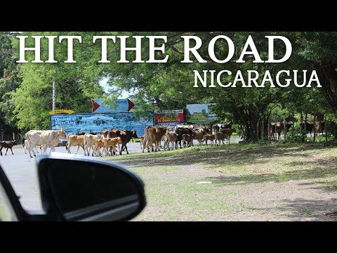 Tom Cat : Out of Bounds - Driving in Nicaragua