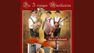 Polka Hoch Drei (Polka)