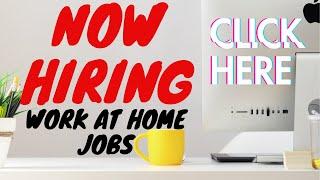 2020 Customer Service Work at Home Job Posting #113
