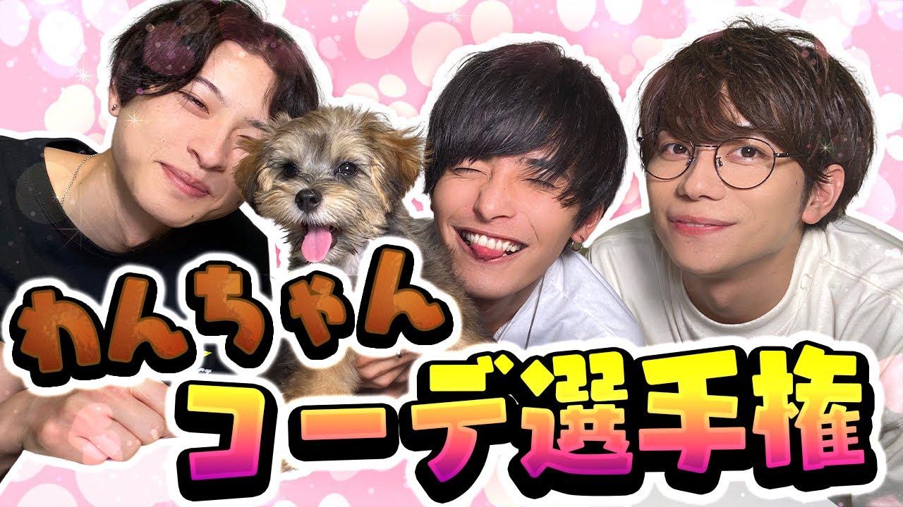 【いぬのきもち】事務所社長の愛犬コーディネート選手権!