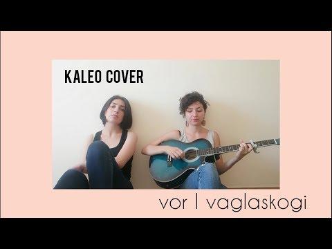 kaleo - vor í vaglaskógi (cover)