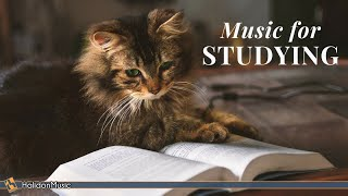 Classical Music for Studying & Brain Power | Mozart, Vivaldi, Tchaikovsky...