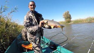 Рыбалка на макушатники Клёв карася сазана кругляка