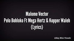 Malome Vector - Pelo Bohloko Ft Mega Hertz & Kopper Waleh(Official Lyric Video)
