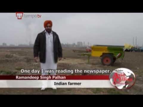 Indian farmers find greener grass in Georgia