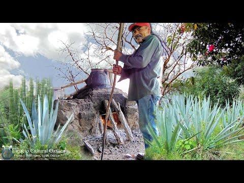 San Juan Bautista Jayacatlan Etla Elaboración del Mezcal Tradicional 2016 Oaxaca