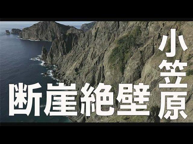 【父島 / 小笠原 / 175】「断崖の東海岸」空撮・たごてるよし_Aerial_TAGO channel