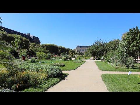 Travel : Two Weeks in Paris, Day Nine : Jardin des Plantes