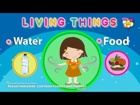 Living and Nonliving Things for Kids | Nursery Rhymes and Baby Songs