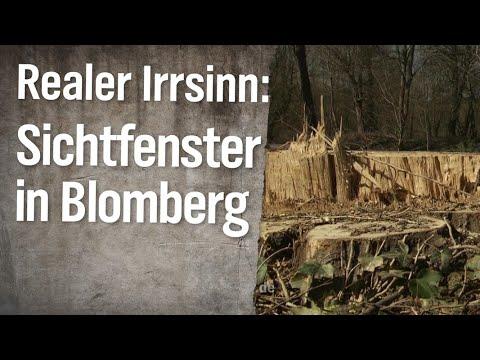 Realer Irrsinn: Sichtfenster in Blomberg | extra 3 | NDR