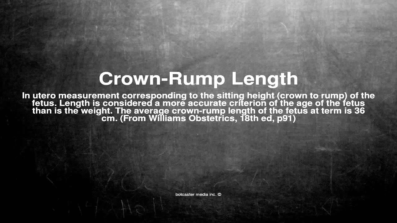 Medical Vocabulary What Does Crown Rump Length Mean Youtube