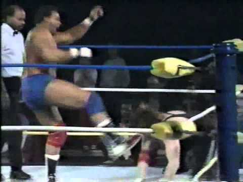 WW 3/25/89- Luger & Sting Inv- Reed vs Bob Cook