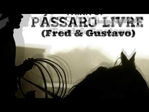 01. Pássaro Livre - Fred & Gustavo