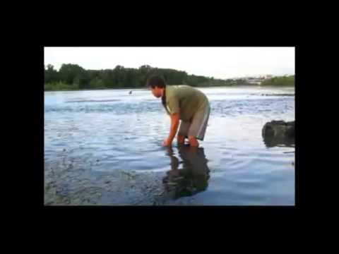 Big Carp Adventures   River Monsters Part 1 & 2