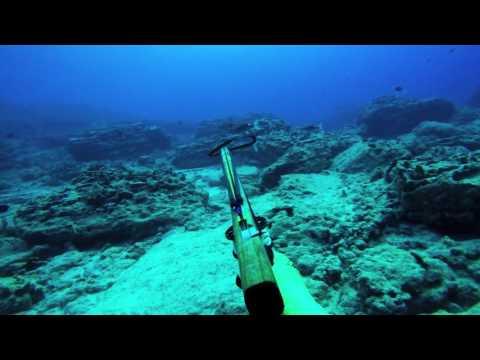 Spearfishing Hawaii