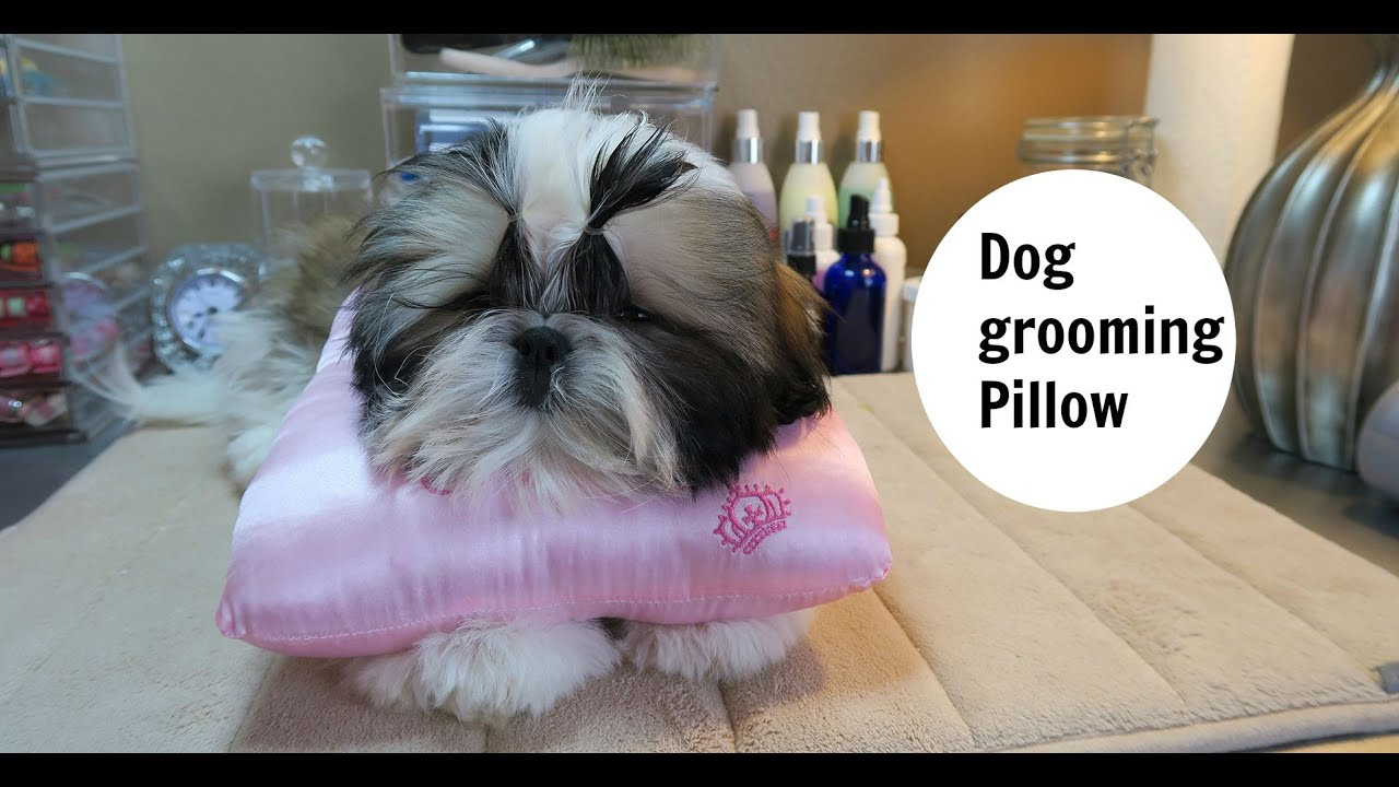 dog grooming pillow