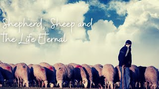 Shepherd, Sheep & The Eternal Life | April 18, 2021 | Canonsburg UP Church