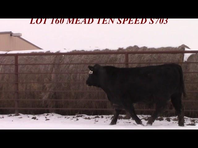 Mead Farms Lot 160