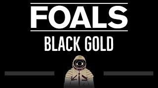 Foals • Black Gold (CC) (Remastered Video) 🎤 [Karaoke] [Instrumental Lyrics]