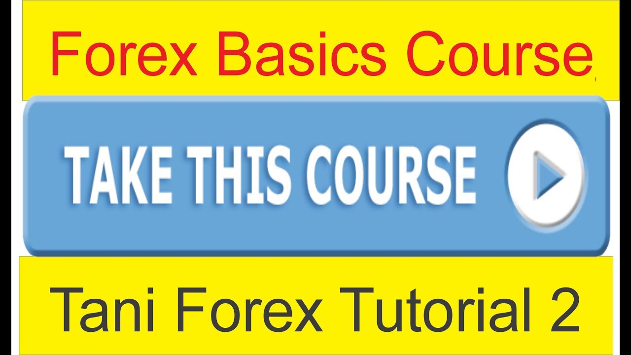 Forex fundamental course