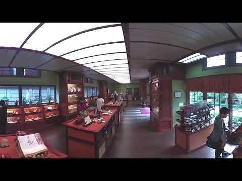 hong kong travel guide  - Nan Lian Garden VR360