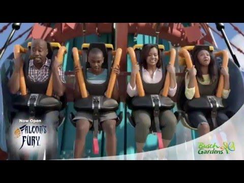 Busch Gardens Tampa Bay | SeaWorld Parks & Entertainment