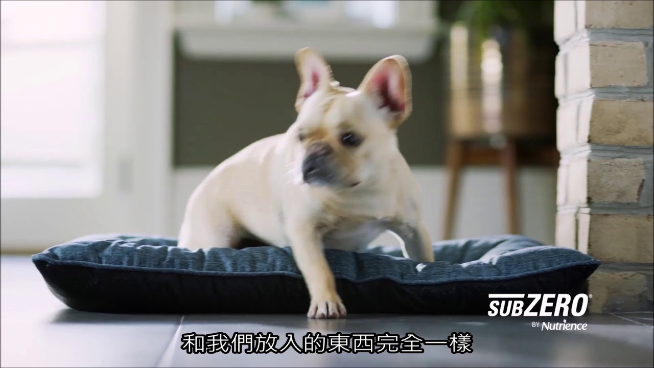 Nutrience紐崔斯30秒形象影片(中字)