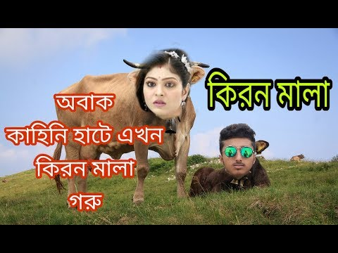 Eid special | kiranmala গরু | short film by  | BD EAGLES |