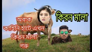 Eid special | kiranmala গরু | short film by  | BD EAGLES |