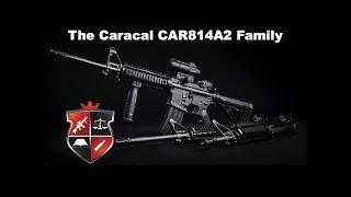 The Caracal CAR814A2 Family