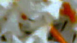 SARATER ARGHYA--SEOLIE