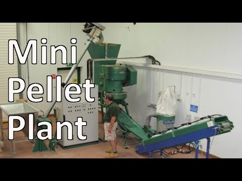 Mini Pellet Plant Manufacturing Wood Fuel Pellets