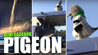 Repeat youtube video PIGEON (REMI GAILLARD)
