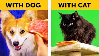 LIFE WITH DOG VS LIFE WITH CAT. Corgi life || Relatable facts by 5-Minute FUN