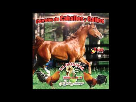 El moro de cumpas / La Original Banda el Limon de Salvador Lizarraga